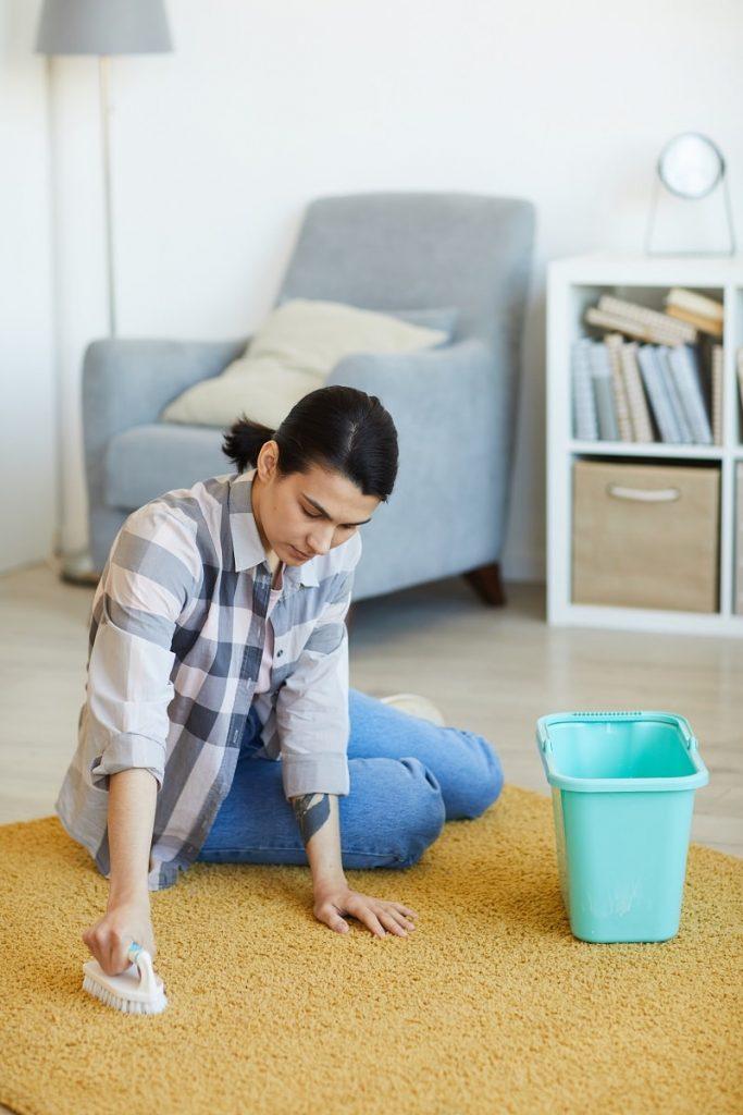 carpet cleaning reno-min